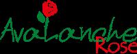 آوالانچ رز فروشگاه تخصصی گل